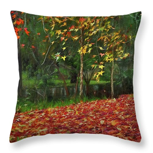 Autumn Colors Throw Pillow featuring the photograph Autumn Colors by Kaye Menner