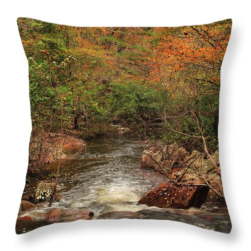 Pickle Creek Throw Pillow featuring the photograph Autumn Colors On Pickle Creek 1 by Greg Matchick