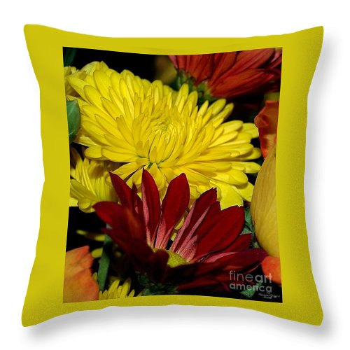 Chrysanthemum Photography Throw Pillow featuring the photograph Autumn Colors by Patricia Griffin Brett