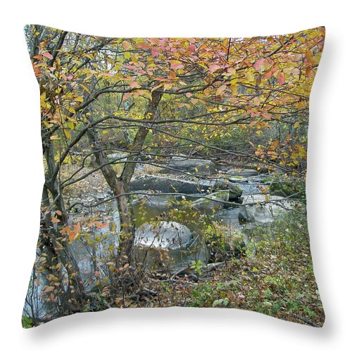 Creek Throw Pillow featuring the photograph Autumn Comes To The Unami Creek by Mother Nature
