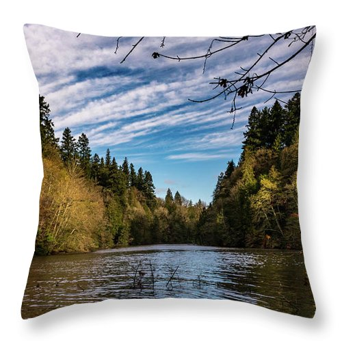 Autumn Throw Pillow featuring the photograph Autumn Cove by Travis Boyd