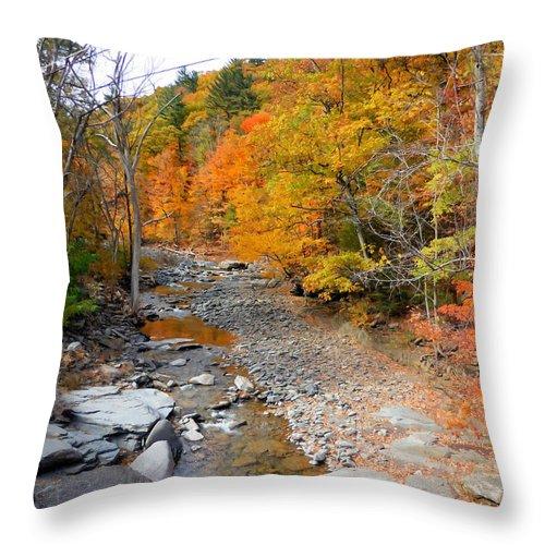 Autumn Creek Throw Pillow featuring the painting Autumn Creek 3 by Jeelan Clark