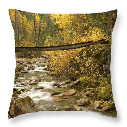 Cross Throw Pillow featuring the photograph Autumn Crossing by Idaho Scenic Images Linda Lantzy