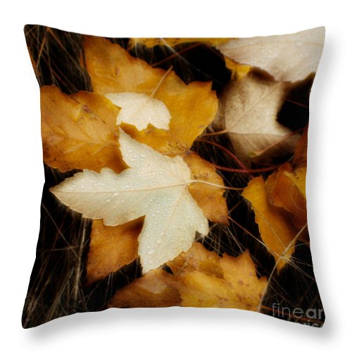 Leaf Throw Pillow featuring the photograph Autumn Dew by Idaho Scenic Images Linda Lantzy