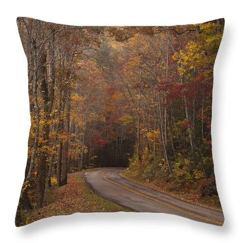 Smoky Throw Pillow featuring the photograph Autumn Drive by Andrew Soundarajan