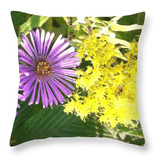Aster Throw Pillow featuring the photograph Autumn Duo by Nelson Strong