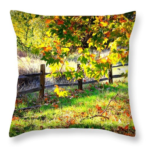 Fences Throw Pillow featuring the photograph Autumn Fence by Carol Groenen
