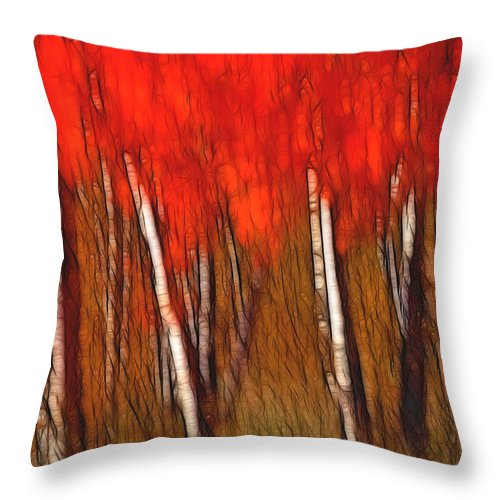 Trees Throw Pillow featuring the photograph Autumn Fire by Bill Morgenstern