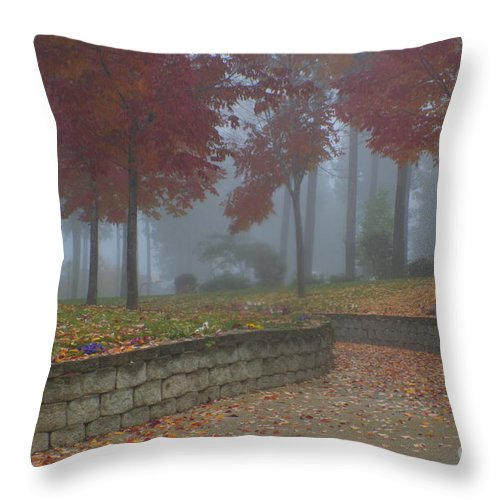 Autumn Throw Pillow featuring the photograph Autumn Fog by Idaho Scenic Images Linda Lantzy
