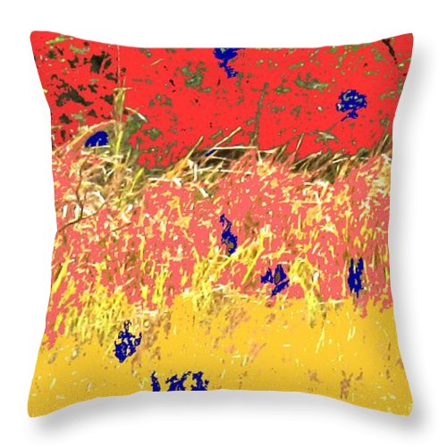 Autumn Throw Pillow featuring the photograph Autumn Grasses by Ian MacDonald