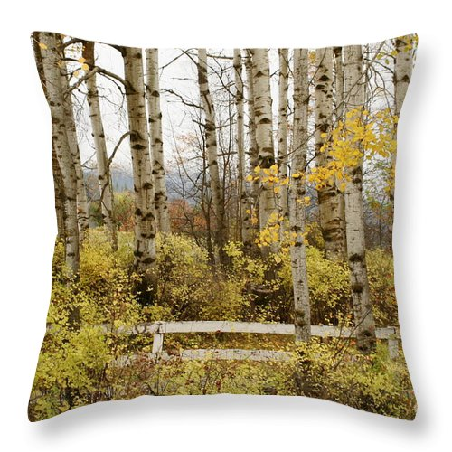 Grove Throw Pillow featuring the photograph Autumn Grove by Idaho Scenic Images Linda Lantzy