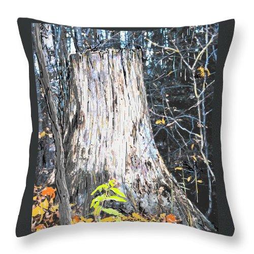 Fall Throw Pillow featuring the photograph Autumn by Ian MacDonald