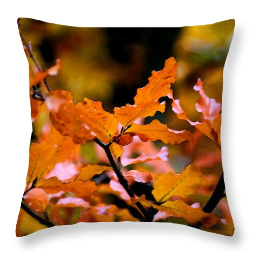 Autumn Throw Pillow featuring the painting Autumn II by Mary Gaines