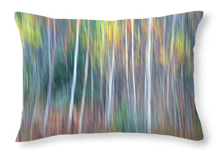 Forest Pastels Form An Autumn Impression Throw Pillow featuring the photograph Autumn Impression by Bill Morgenstern