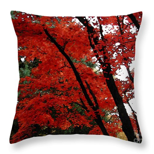 Autumn Throw Pillow featuring the photograph Autumn In New England by Melissa A Benson