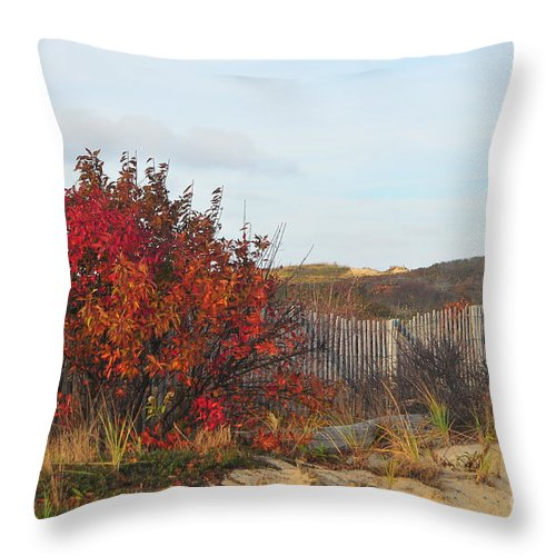 Fall Throw Pillow featuring the photograph Autumn In The Dunes by Catherine Reusch Daley