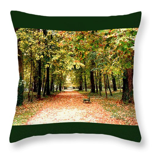 Autumn Throw Pillow featuring the photograph Autumn In The Park by Nancy Mueller