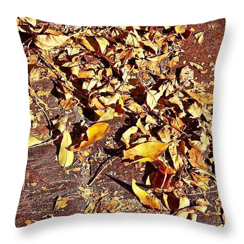 Aspen Throw Pillow featuring the photograph Autumn Is On The Way by Elisabeth Derichs