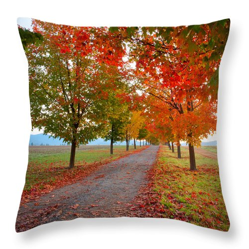 Washington Throw Pillow featuring the photograph Autumn Journey by Idaho Scenic Images Linda Lantzy