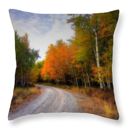 Fall Throw Pillow featuring the photograph Autumn Lane by Winston Rockwell
