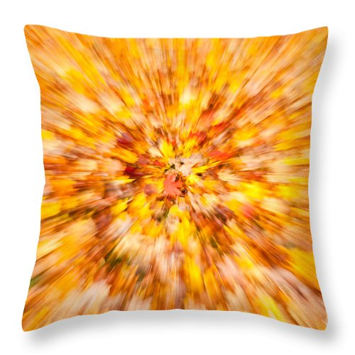 Clarence Holmes Throw Pillow featuring the photograph Autumn Leaves I by Clarence Holmes