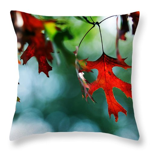 Autumn Fall Leaf Leaves Red Seasons Lone Nature Botanical Throw Pillow featuring the photograph Autumn Leaves by Jill Reger