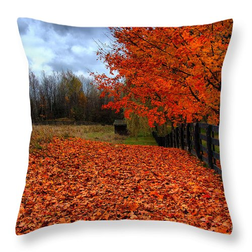 Autumn Throw Pillow featuring the photograph Autumn Leaves by Joe Ng