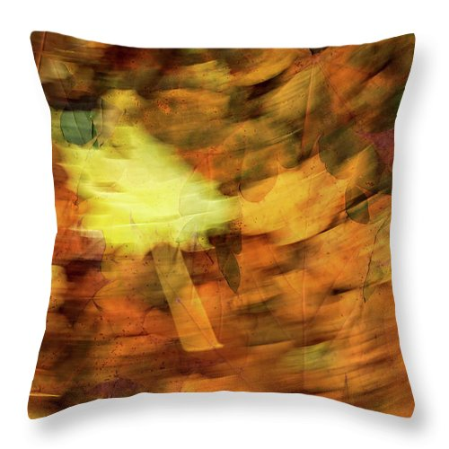 Autumn Throw Pillow featuring the photograph Autumn Leaves by Michael Mogensen
