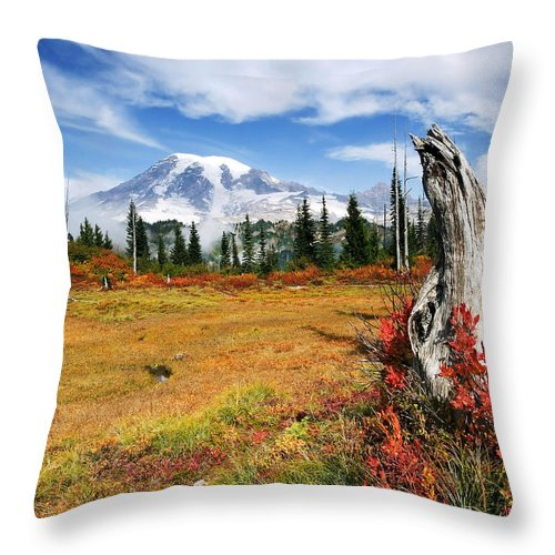 Rainier Throw Pillow featuring the photograph Autumn Majesty by Mike Dawson