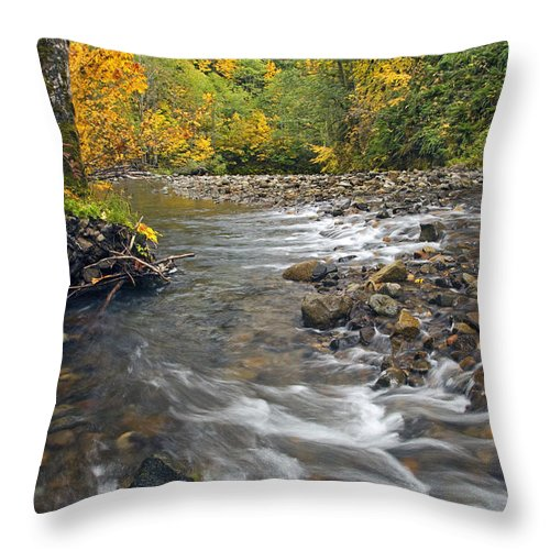 Fall Throw Pillow featuring the photograph Autumn Meander by Mike Dawson