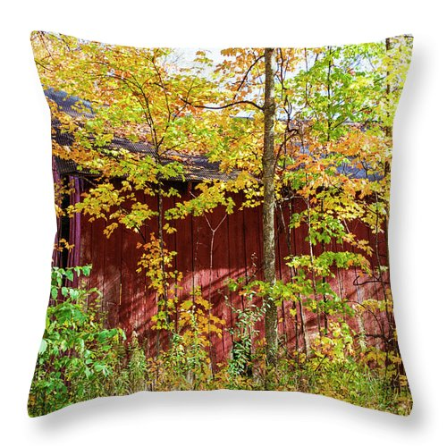 35mm Film Throw Pillow featuring the photograph Autumn Michigan Barn by John McGraw