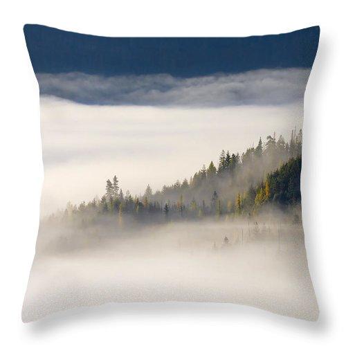 Fog Throw Pillow featuring the photograph Autumn Morn by Mike Dawson