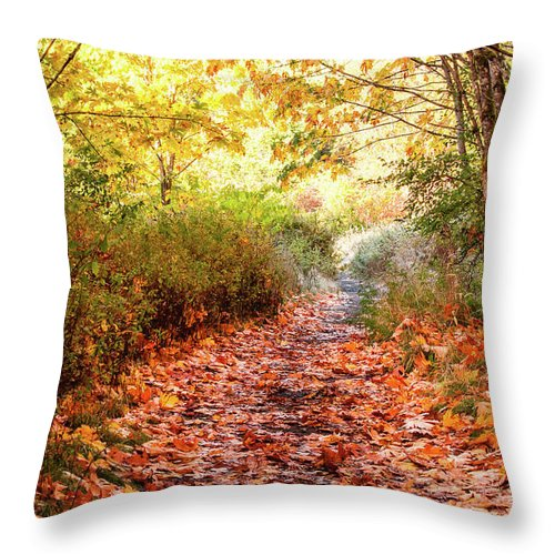 Landscapes Throw Pillow featuring the photograph Autumn Morning by Claude Dalley