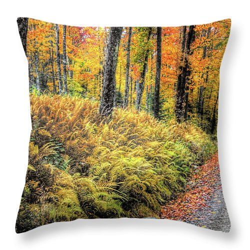 Ferns Throw Pillow featuring the photograph Autumn On Long Pond Road by Wayne King