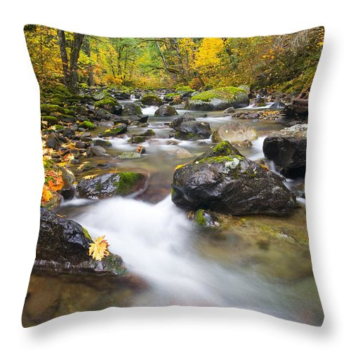Fall Throw Pillow featuring the photograph Autumn Passing by Mike Dawson