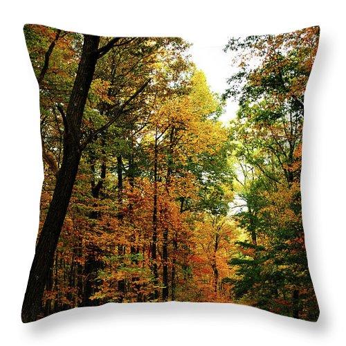 Autumn Throw Pillow featuring the photograph Autumn Path by Lori Tambakis