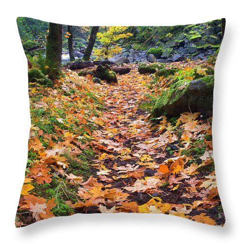 Path Throw Pillow featuring the photograph Autumn Path by Mike Dawson