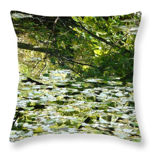 Pond Throw Pillow featuring the photograph Autumn Pond by Valerie Ornstein