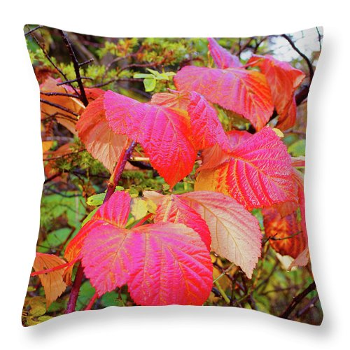 Red Throw Pillow featuring the photograph Autumn Red by Rene Larsen