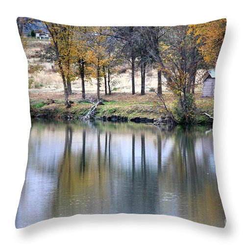 Fall Reflection Throw Pillow featuring the photograph Autumn Reflection 16 by Carol Groenen