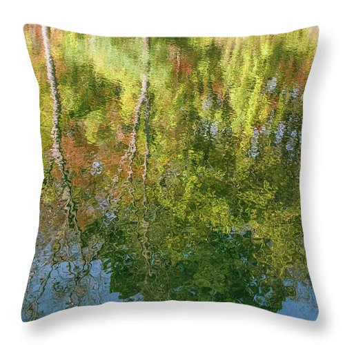 35mm Film Throw Pillow featuring the photograph Autumn Reflection by John McGraw
