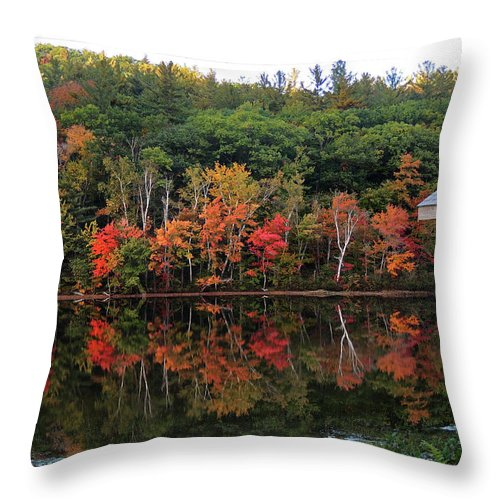Landscape Throw Pillow featuring the photograph Autumn Reflections And Cabin on Baker Pond by Nancy Griswold
