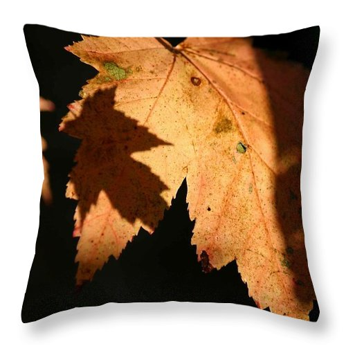 Betsy Lamere Throw Pillow featuring the photograph Autumn Reflections by Betsy LaMere