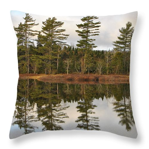 Tree Lined Lake Throw Pillow featuring the photograph Autumn Reflector by Kathleen Sartoris