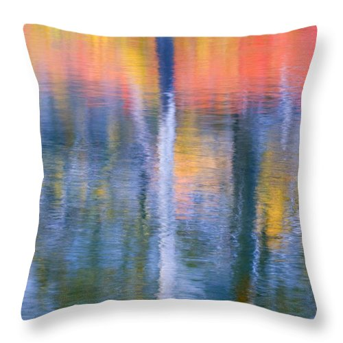 Reflection Throw Pillow featuring the photograph Autumn Resurrection by Mike Dawson
