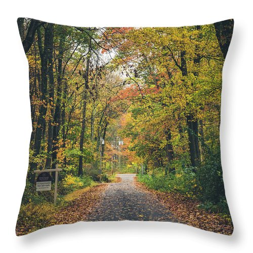 Autumn Throw Pillow featuring the photograph Autumn Road by Robert MacPherson