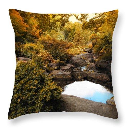 Autumn Throw Pillow featuring the photograph Autumn Rock Garden by Jessica Jenney