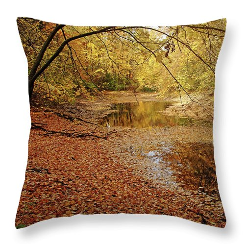 Autumn Throw Pillow featuring the photograph Autumn Serenity by Debbie Oppermann