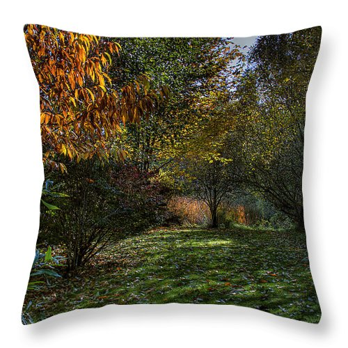 Hdr Throw Pillow featuring the photograph Autumn Shadows by David Patterson