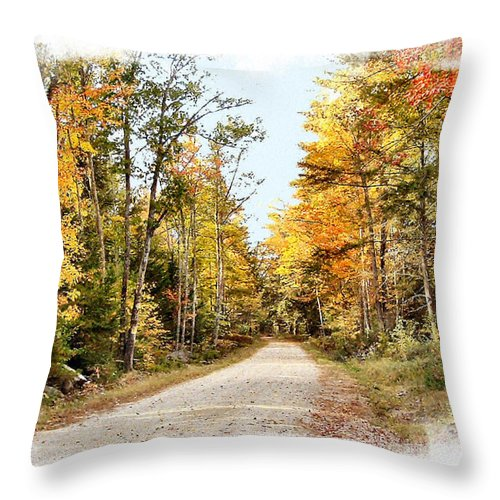 Road Throw Pillow featuring the photograph Autumn Splash by Rose Guay